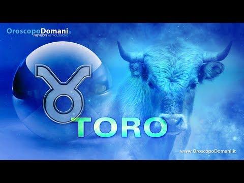 Caratteristiche del segno zodiacale Toro!