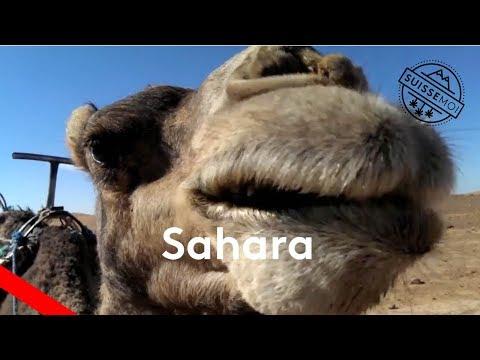 Suisse moi en trek : Dans le désert du Sahara