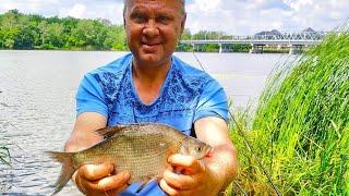 Фидерная рыбалка на новых местах Северского Донца