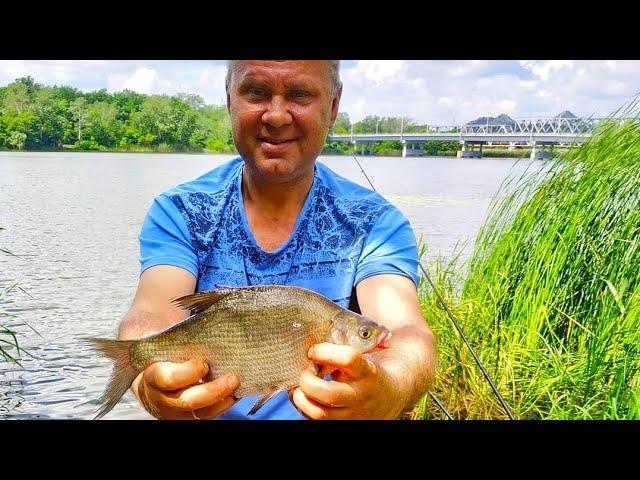 Фідерна рибалка на нових місцях Сіверського Донця