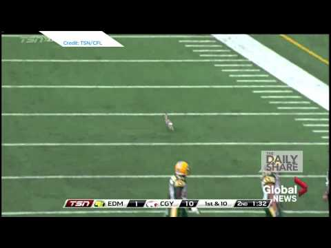 Jackrabbit runs across football field, defies gravity with end zone dance