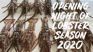 Opening Night of LOBSTER SEASON 2020 || Night time Lobstering || BULLY NETTING in the Florida Keys