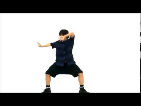 【あおい】 被害妄想携帯女子(笑) 踊ってみた【反転 MIRROR】