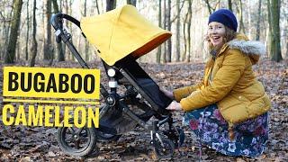 Bugaboo Cameleon 3 plus - wózek, który wybrałam
