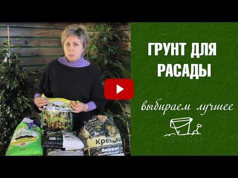 179Юля миняева сад и огород видео новое 2018 ютуб