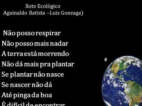 xote ecologico