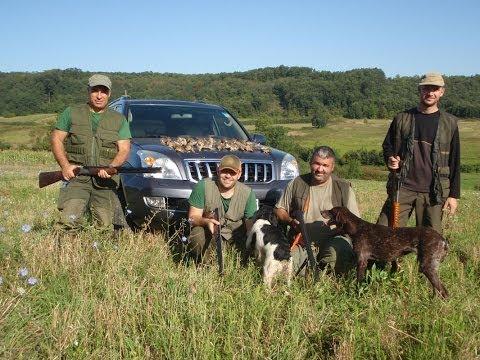 Lov i ribolov - Lov na prepelice - Vrčin