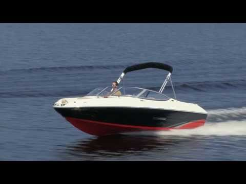 Meet the Stingray 198LX