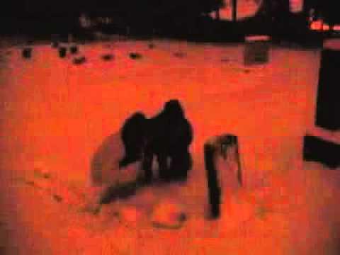 Kronos Quartet  Dark Was The Night