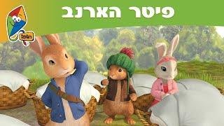 הרפתקאות פיטר הארנב