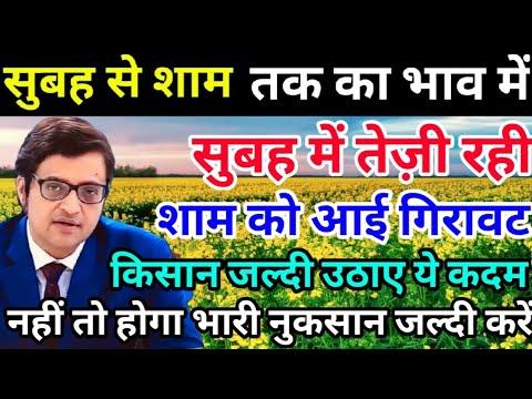 sarson report | सुबह से शाम तक का ताजा सरसों का भाव | latest sarson report by Vivek Singh