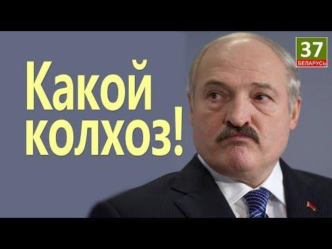 Лукашенко устроили колхозный приём. Главные новости Беларуси ПАРОДИЯ#2