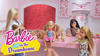 Plethora of Puppies | Barbie LIVE! In the Dreamhouse | Barbie