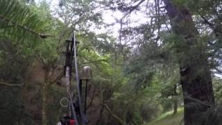 Lake Sonoma Pig Hunting