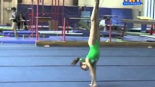 Чемпионат по гимнастике 2013.03.18