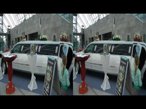 Hochzeitsmesse Leipzig 2011 - Impressionen - 3D-Hochzeit