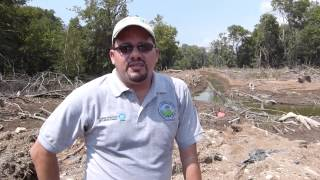 Testimonio de Arturo Dominici, Fundespa - Conservation International en Juan Díaz