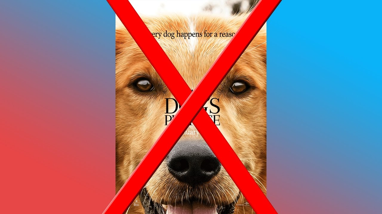 A Dog S Purpose Abuse Video Youtube