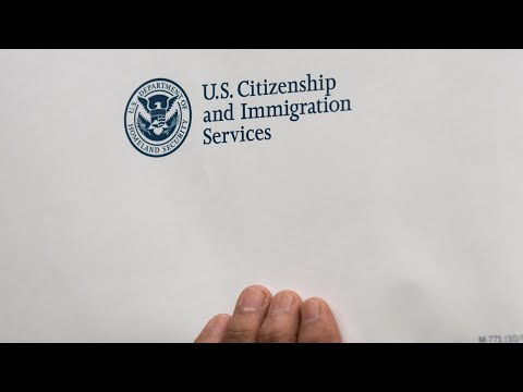 What are undocumented immigrants' legal options?