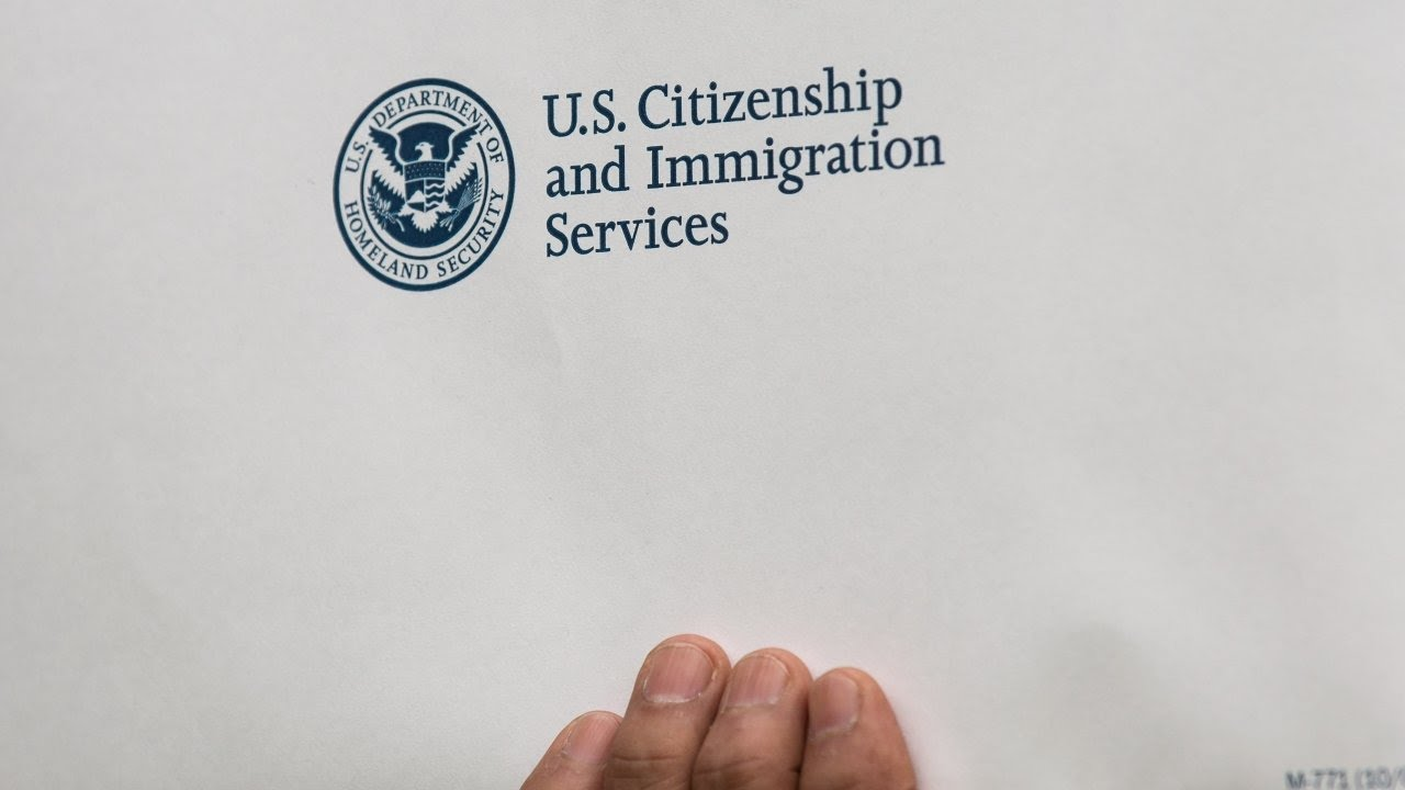 Download What are undocumented immigrants' legal options?