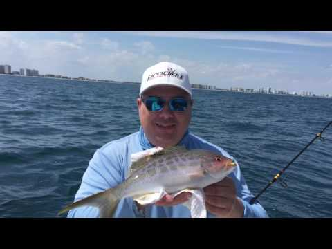 Fishing trip out of Ft Lauderdale - Port Everglades
