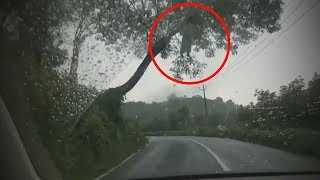 5 Scariest Things Caught on Dashcam