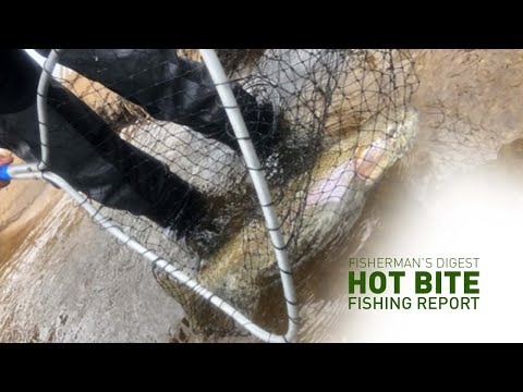 Jigging The Detroit River And Other River Reports - Hot Bite Fishing Report - March 4th