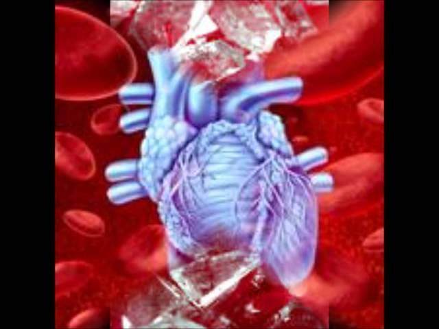 CARDIOVASCULAR BLOOD FLOW RAP