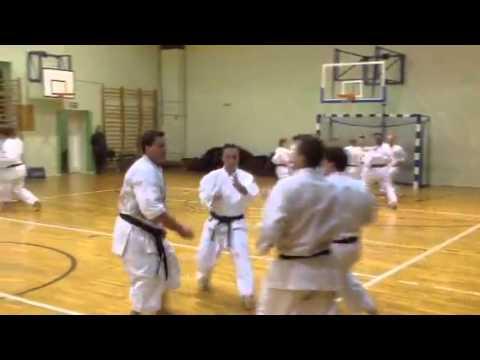 Ika Karate Soke Kubota In Poland