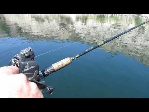 Rufus Woods Trout Fishing 2019