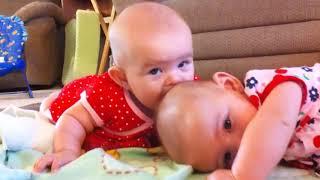 Funny Baby Siblings - Cute Video