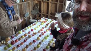Amazing Apple Trees dating back to the 1700s Century Farm Orchards in NC, Come Learn with us!