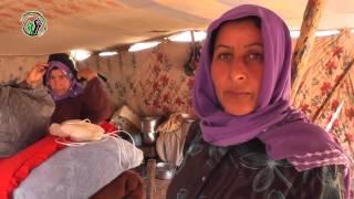 Download Video جولة في مخيمات ريف حماة الشرقي | الجزيرة مباشر MP3 3GP MP4