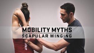 Mobility Myths with Dr. Quinn | Scapular Winging | JTSstrength.com