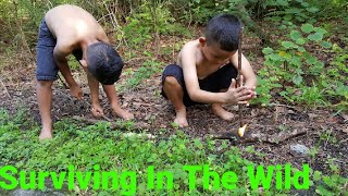 Primitive Survival/City Boys Try To Survive In The Woods