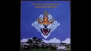 Ted Nugent and the Amboy Dukes - Call of the Wild