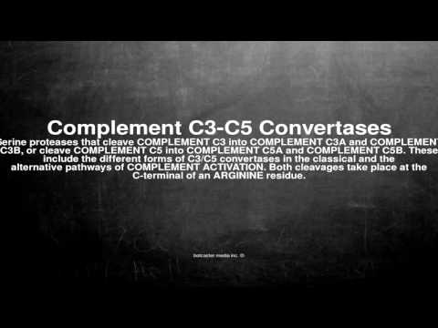 Medical vocabulary: What does Complement C3-C5 Convertases mean