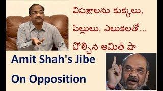 విపక్షాలను కుక్కలు, పిల్లులు, ఎలుకలతో... పోల్చిన అమిత్ షా Amit Shah's Jibe  On Opposition