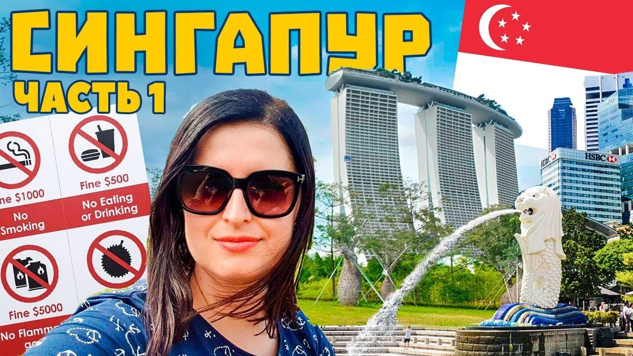Сингапур - цены шок. Транспорт, жилье, зоопарк, стрижка