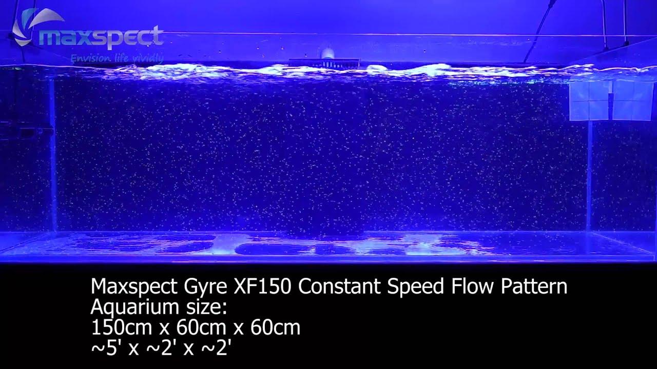 maxspect gyre xf150 flow pattern youtube