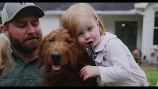 GUNNER FILM | Gunner, The Dog That Changed My Life