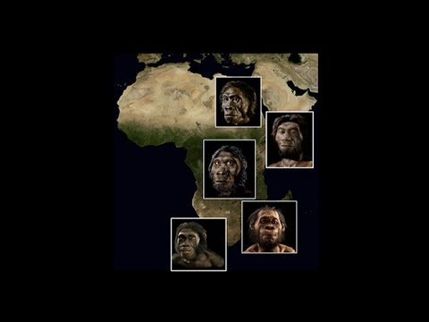 CARTA: Origins of Genus Homo – Steven Churchill: Southern Africa and the Origin of Homo