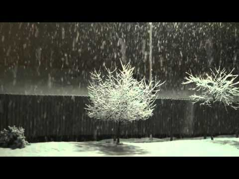 [10 Hours] Snowy Backyard at Night Video & Audio Sleigh Bells [1080HD] SlowTV