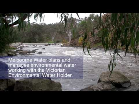 Environmental water release for Yarra River