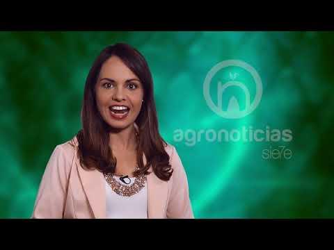 AGRONOTICIAS sie7e PROGRAMA 58