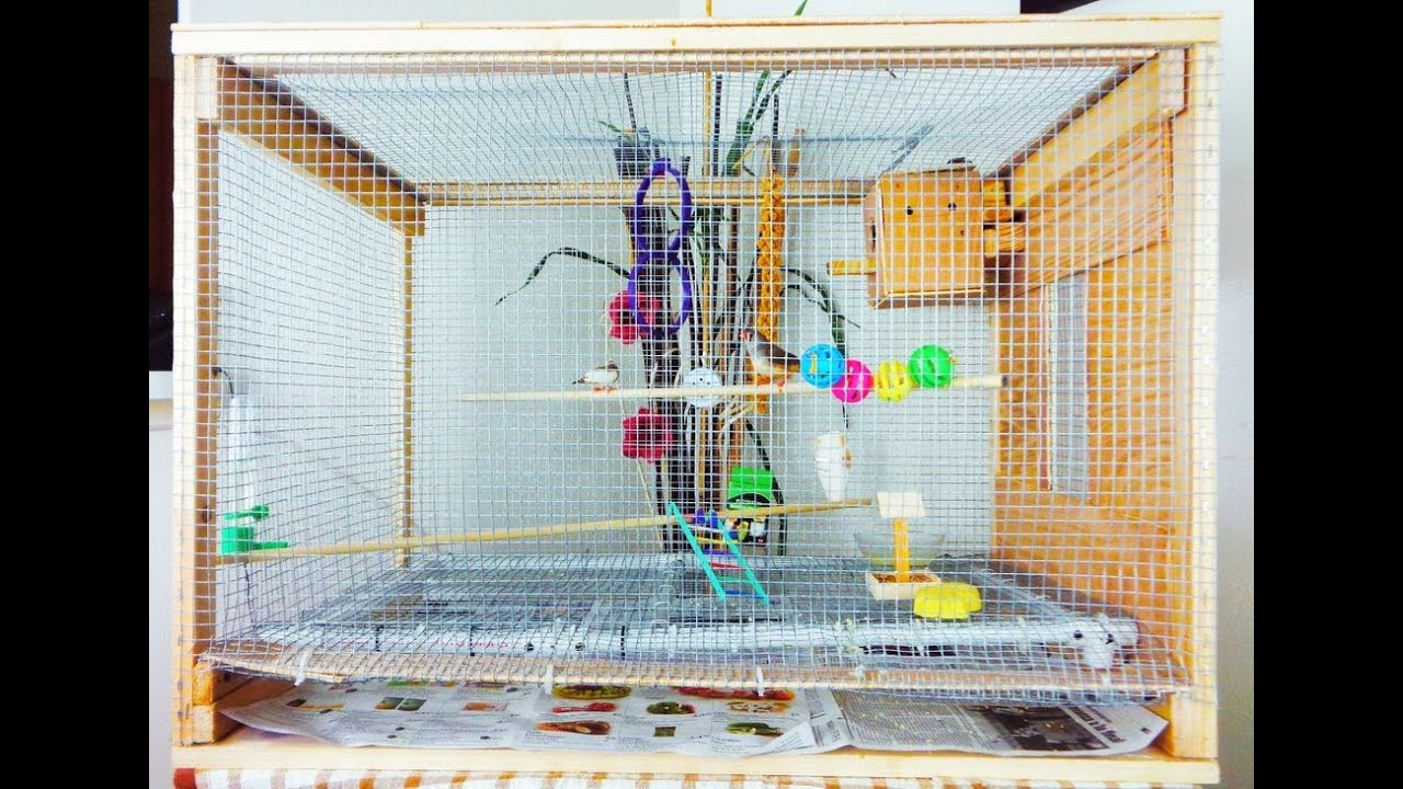 DIY Large Bird Cage Small Aviary : 4