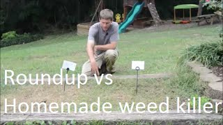 How to Make homemade weed killer and show results vs Roundup