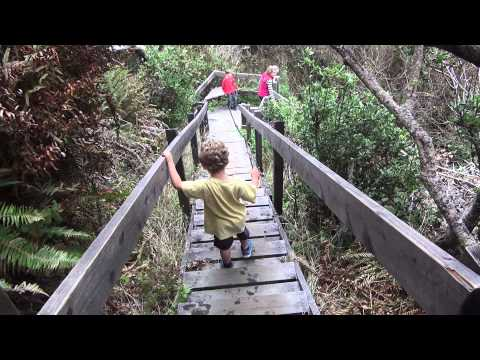 What to do when you're in Mendocino - A food, wine, travel and culture video blog