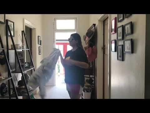 S S S Saturday night! Jess Mauboy - fan video