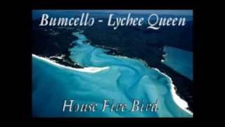 Bumcello - House Fire Bird  [Lychee Queen]